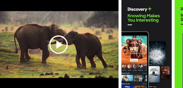 Discovery Plus for Windows